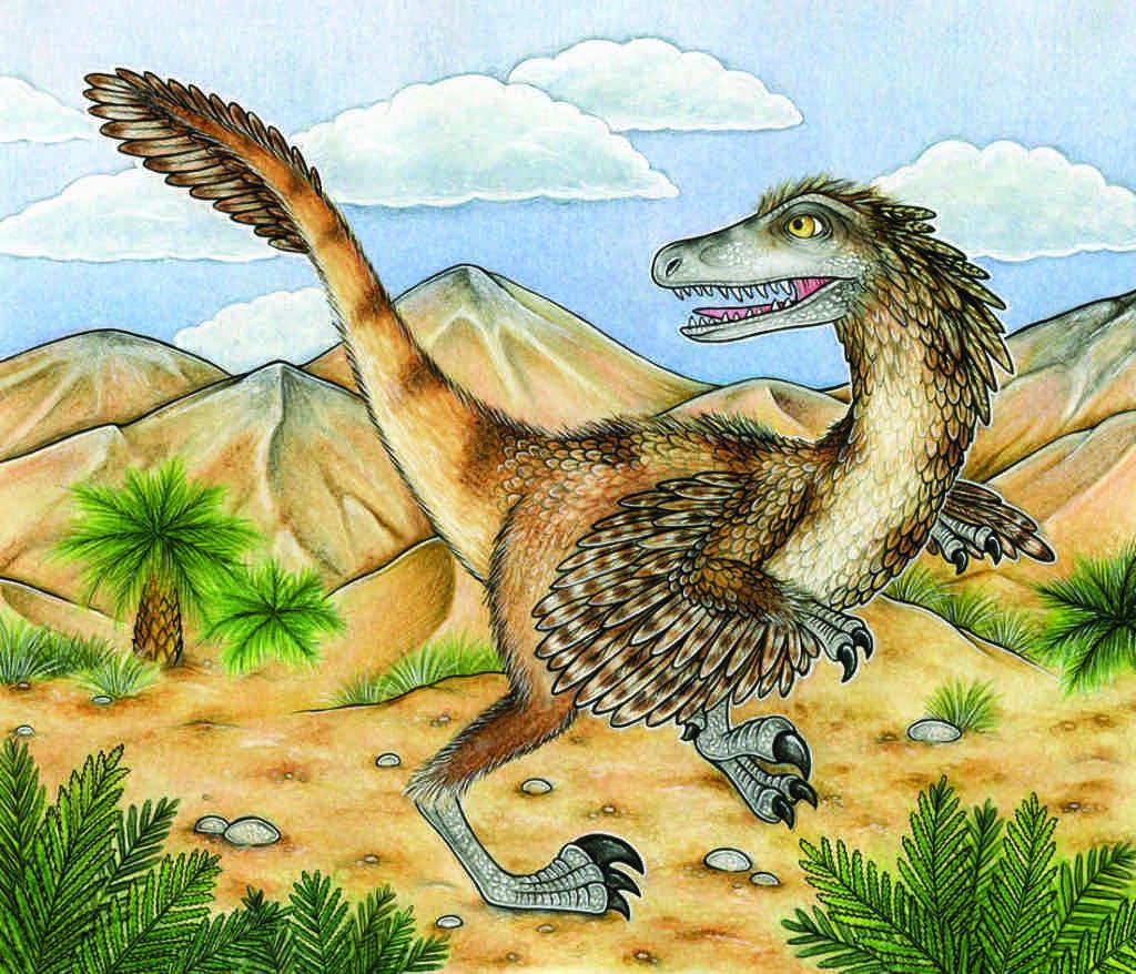 Velociraptor illustration